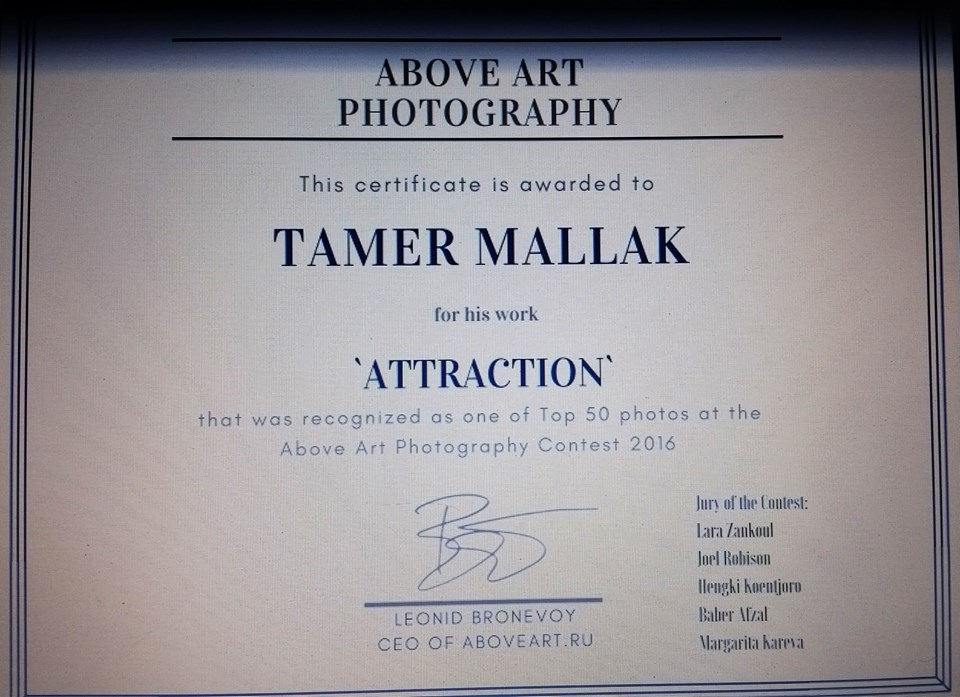 Certificate top 50 photo at the Above Art Photography Contest 2016